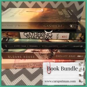 book bundle 1